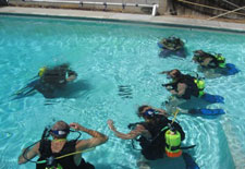 Learn to Dive Classes